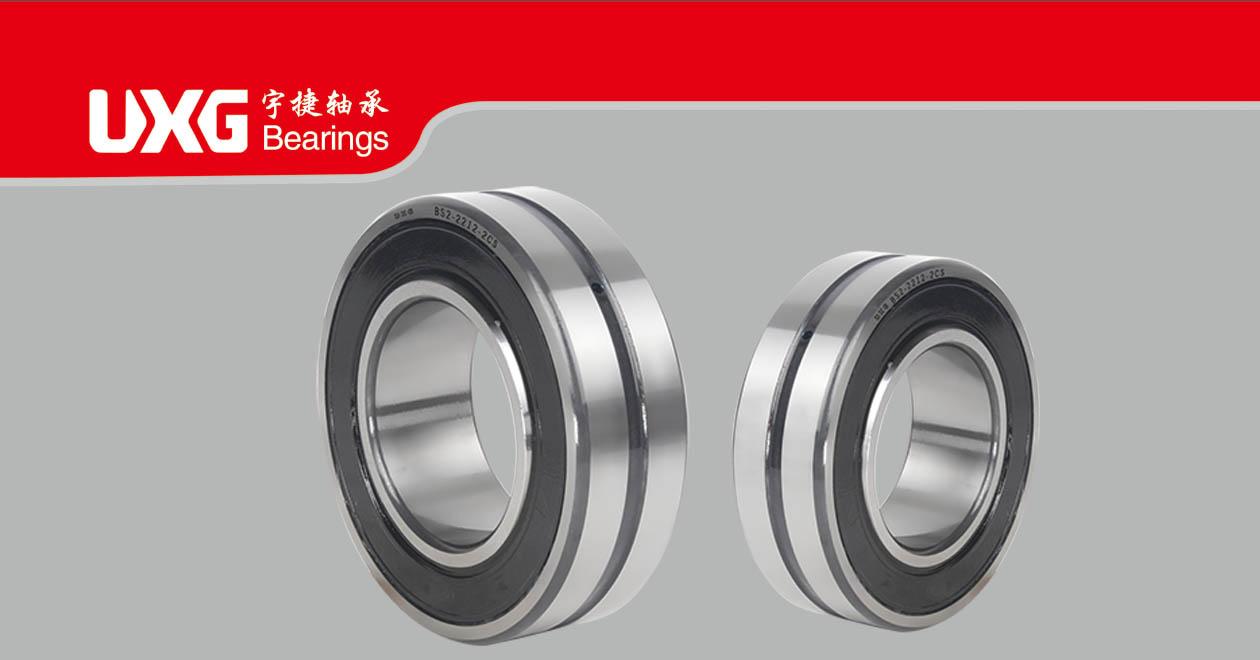 BS series sealed bearings